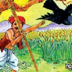 గద్ద- పిల్లి కథ